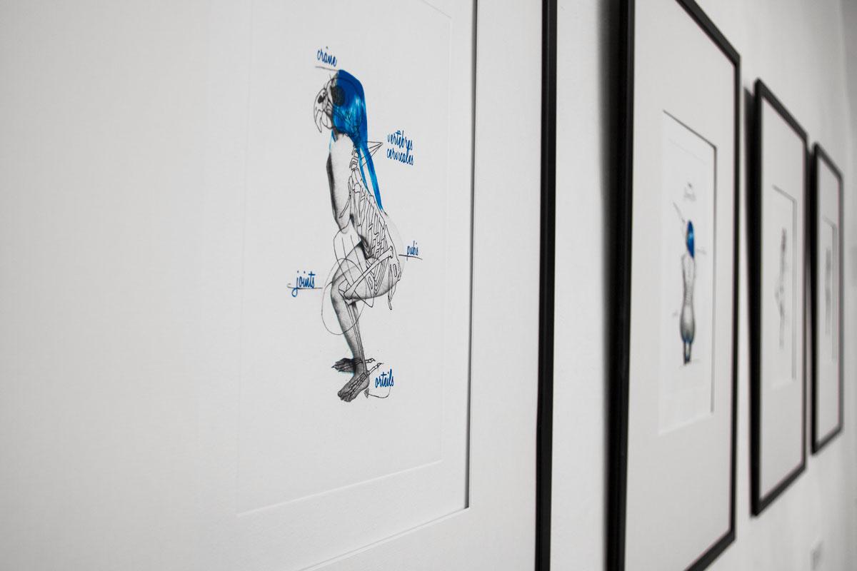 anatomie_forzate_angelo_gallo_galleria291_12